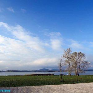 Le lac de Madine